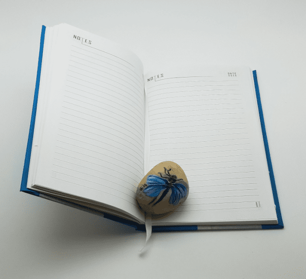 Chicago Flag Journal open with paperweight